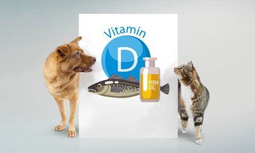 IQI News Vitamin d and fish oil