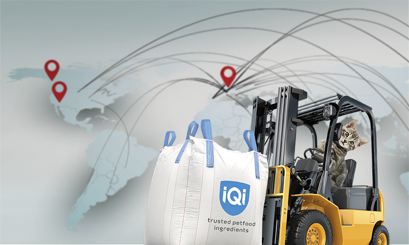 IQI opens up its European warehouse in a unique new video